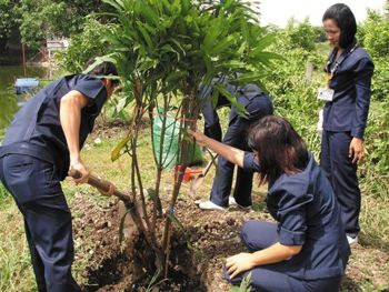Tree Planting at factory in Thailand