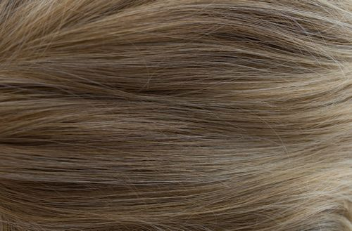 236 - Dark blonde with light blond tips