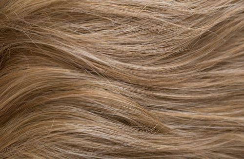 713 - Light brown with ash blonde highlights