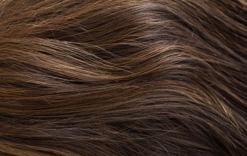 829 - Darkest brown with pale copper highlights