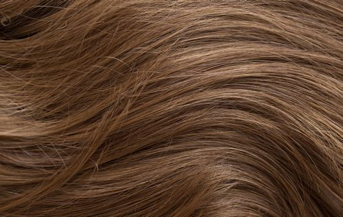 A761G - Dark brown roots with warm brown highlights