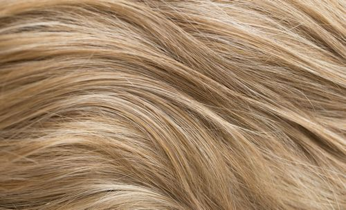 A791G - Medium brown roots with blonde tips